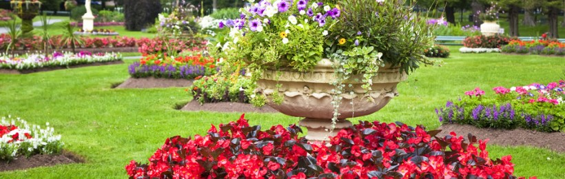Getting Ready to Plant Your Annuals