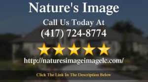 Nature's Image Springfield, MO Impressive Five Star Review by Andrew H.