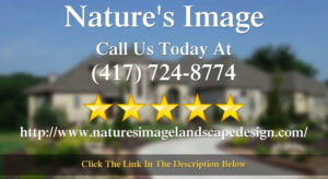 5 Star Review by Bonita S for Nature's Image in Springfield, MO