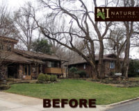 Newly completed landscaping project – before and after photo